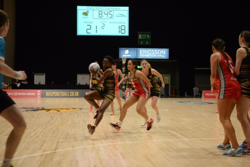 Wasps Sting Battling Northumbria